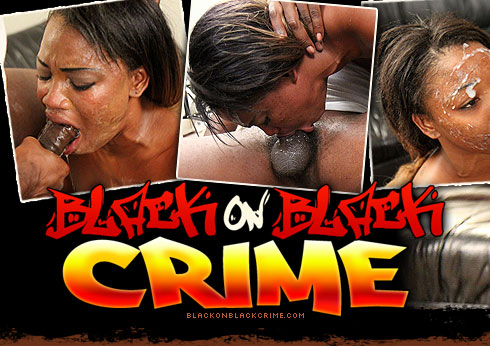 Black On Black Crime Destroys Dakota